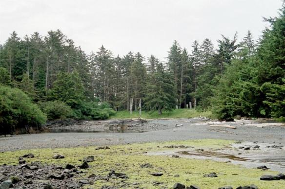 A Haida Village site on the Haida Gwaii, Totem Poles are just visible on the rising ground.