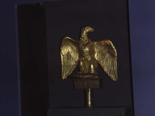 Ewart's Eagle.
