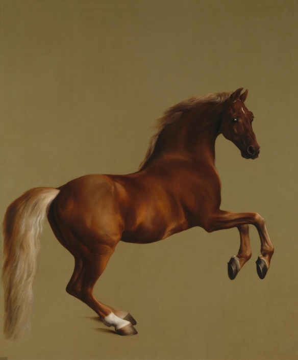 Whistlejacket_by_George_Stubbs_edit